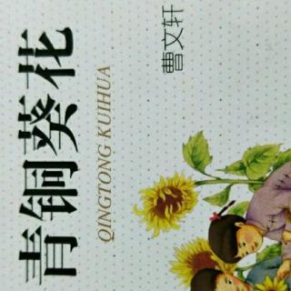 在青铜葵花中,用简洁的语言概括最美的南瓜花灯和耀眼图片