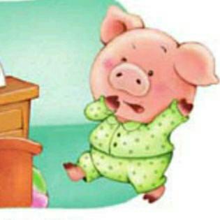 可爱大胖猪图片