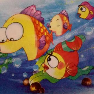 小星星幼儿园王老师讲故事1001之27《大鱼和小鱼》图片