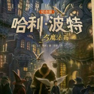 《哈利波特与魔法石1》