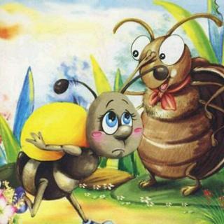 蚂蚁与屎壳郎