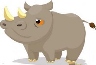 大傻瓜和犀牛的故事