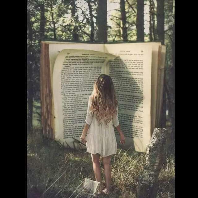 我喜欢的一本书