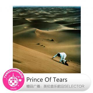 糖蒜爱音乐之The Selector:Prince Of Tears