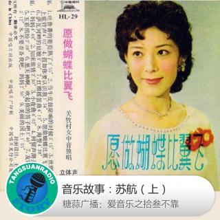 糖蒜爱音乐之音乐故事:苏航(上)