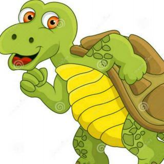 【骄傲的乌龟强强】在线收听_园长妈妈0895的播客