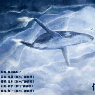 【翻唱《化身孤岛的鲸》】在线收听_柠檬少年橘子梦
