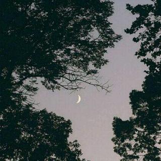 水星记 钢琴谱