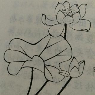 简笔画 手绘 线稿 320_320