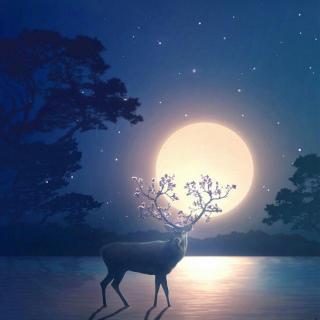 用心说   月亮与六便士