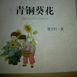 青铜葵花图片