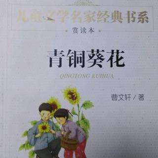 《青铜葵花》芦花鞋6图片