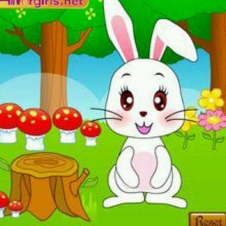 微信可爱小兔子头像 伤心