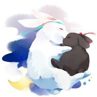 用心说 | 小灰兔与小白兔