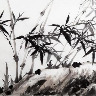 Puro chino: dibujos a agua y tinta
