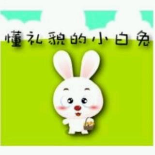 童之梦幼儿园晚间故事会《懂礼貌的小白兔》