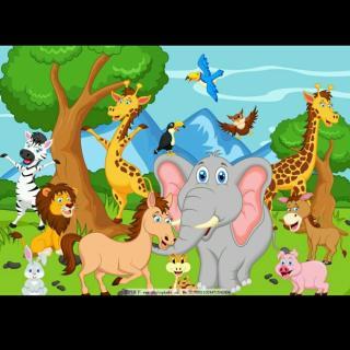动物王国开大会 20180619184532