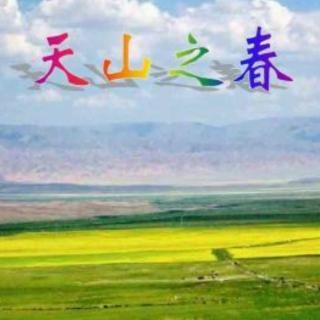 吴奕琦 琵琶 天山之春