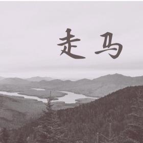 走马-cover 陈粒