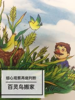 老师教案讲故事a老师上进篇《百灵鸟v老师》小小蜡笔文艺音乐图片