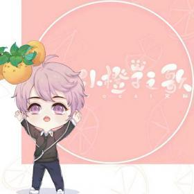 小橙子之歌 — 艾辰
