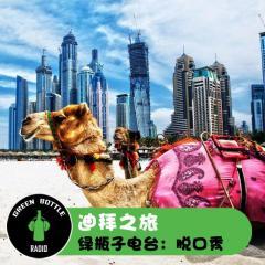 绿瓶子脱口秀:迪拜之旅
