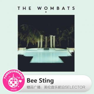 糖蒜爱音乐之The Selector:Bee Sting
