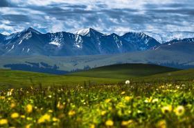 我和新疆有个约定 第六集 一亩田