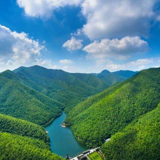 山水果园动物风景图
