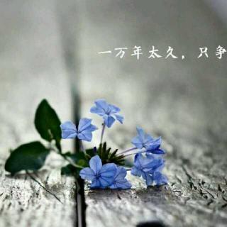 №青绾电台☞