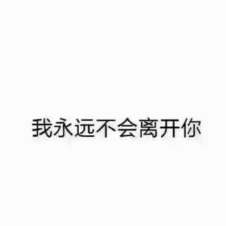 一起谈谈我们身边的四叶草家人   by_节操君