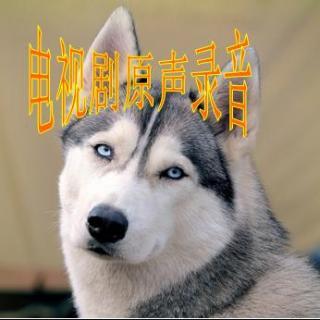 【电视剧】遇见爱情的利先生 第9集