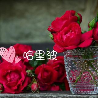 睡前故事-世界上最美丽的花朵