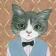 V猫先生✨