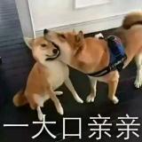 🇨🇳  Am陈尚天ه