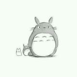 Totoro. 十玥