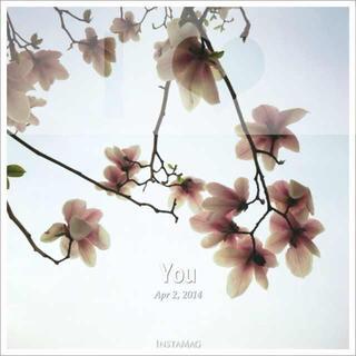 【灵电妙影】尾声—To you  To myself