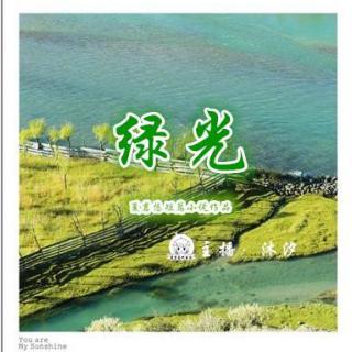 【短篇】绿光(下)主播:沐汐