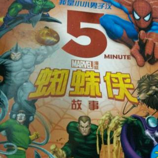 蜘蛛侠(一)