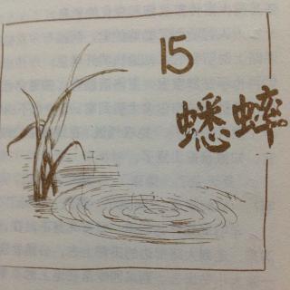 夏洛的网第十五章:蟋蟀