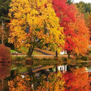 行走在唐诗宋词里的秋天