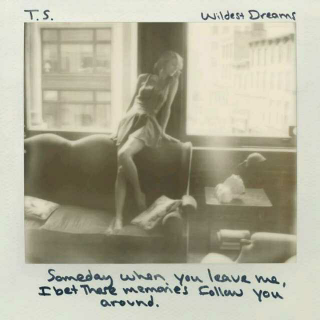 Wildest Dreams(MV)——Taylorswift