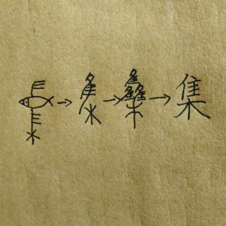"""20151119说""""集""""字"""
