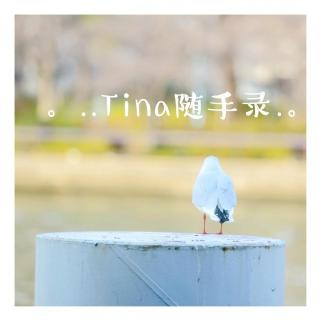 Tina随手录(7)—你的保留节目是啥?—2015.11.25