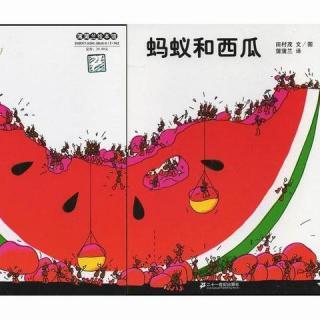 【优电台】蚂蚁和西瓜