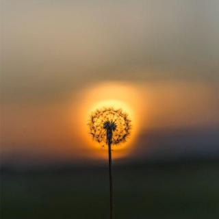 【晨间冥想】打开能量中心