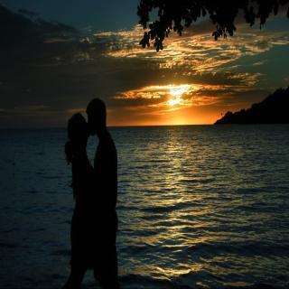 【完美恋爱】单单:为什么你喜欢的人很难追到?