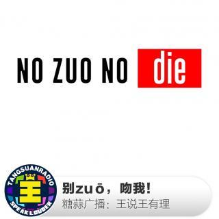 王说王有理:别zuō,吻我!