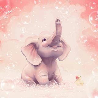 【可爱的动物】Vol.12:大象为什么鼻子长?