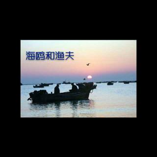 海鸥和渔夫
